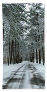 Winter On Mohegan Park Road Beach Towel