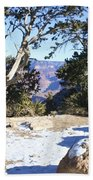 Winter On The South Rim Beach Towel
