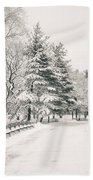 Winter Path - Snow Covered Trees In Central Park Beach Towel by Vivienne Gucwa