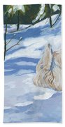 Winter Romp Beach Towel by Molly Poole