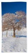 Winter Season On The Plains Portrait Beach Towel