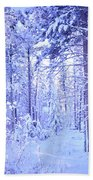 Winter Solace Beach Towel