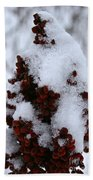 Winter Sumac Beach Towel