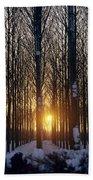 Winter Sunset Through The Trees Beach Towel