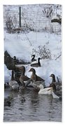 Winter Swimming Hole Beach Towel