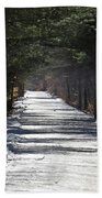 Winter Trail Beach Towel