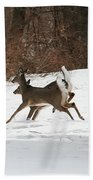 White Tailed Deer Winter Travel Beach Towel