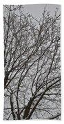 Winter Tree 6 Beach Towel