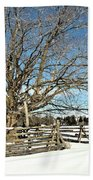 Winter Tree And Fence Beach Towel