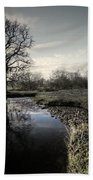 Winter Tree On The River Culm Beach Towel