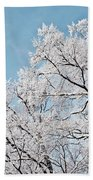 Winter Tree Scene Beach Towel