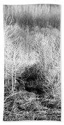 Winter Trees B And W 3 Beach Towel