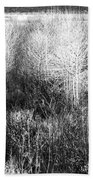Winter Trees B And W 5 Beach Towel