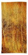 Winter Trees Color 4 Beach Towel