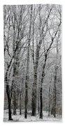 Winter Trees Beach Towel