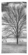 Winter Trees Beach Sheet