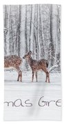Winter Visits Card Beach Towel