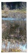 Winter Wetlands Of Alabama Beach Towel