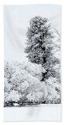 Winter White Beach Towel