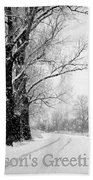 Winter White Season's Greetings Beach Towel by Carol Groenen