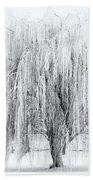 Winter Willow Beach Towel