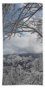 Winter Window Wonder Beach Towel