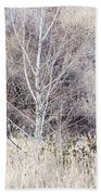 Winter Woodland With Subdued Colors Beach Towel