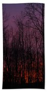 Winter Woods Sunset Beach Towel