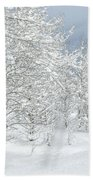 Winter's Glory - Grand Tetons Beach Towel by Sandra Bronstein