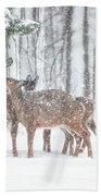 Winters Love Beach Towel