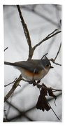 Winter's Tufted Titmouse Beach Towel