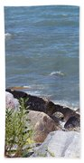 Winthrop Water Beach Towel