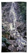 Wirt At Falls In Bc Beach Towel