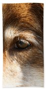 Wise Old Collie Eyes Beach Sheet