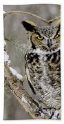 Wise Old Great Horned Owl Beach Towel