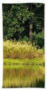 Wispy Wild Grass Reflections Beach Towel