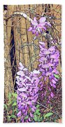 Wisteria And Old Fence Beach Towel