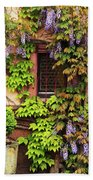 Wisteria On A Home In Zellenberg France 3 Beach Towel