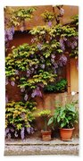 Wisteria On Home In Zellenberg 4 Beach Towel by Greg Matchick