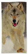 Wolf 1 Beach Towel