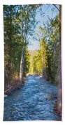 Wolf Creek Flowing Downstream  Beach Towel