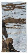 Wolf Pair Beach Towel