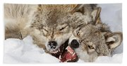 Wolves Rules Beach Towel
