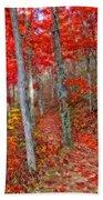 Wonders Of Autumn  Beach Towel