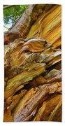 Wood Creature Beach Towel by John Malone