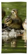 Wood Duck Babies Beach Towel