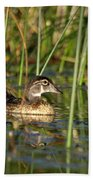Wood Duck Drake Beach Towel