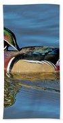 Wood Duck Male Calling Beach Towel