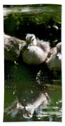 Wood Ducklings On A Log Beach Towel