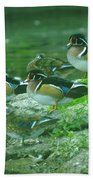 Wood Ducks Hanging Out Beach Sheet